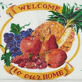1996 美国早期年代布面月历 welcome to our home