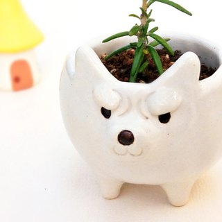 White wolf plant pot 1 Ceramics item cactus pot Japan
