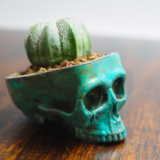 Skull pots cactus small potted plants in brass and Patina color Handcrafted from