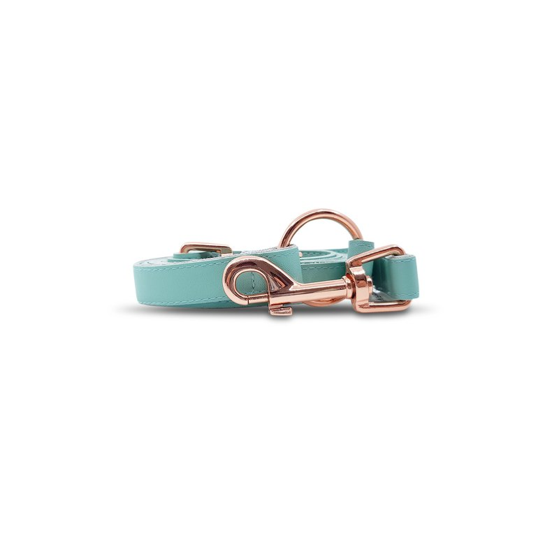 Dog and Cat Leash in Mint with Rose Gold Hardware