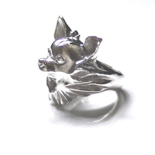 Standard Chihuahua Ring