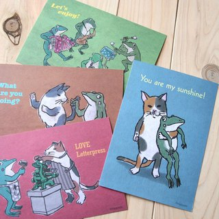 Cats and frogs post card set of 4