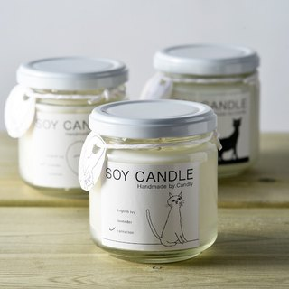 soy candle (bottle)