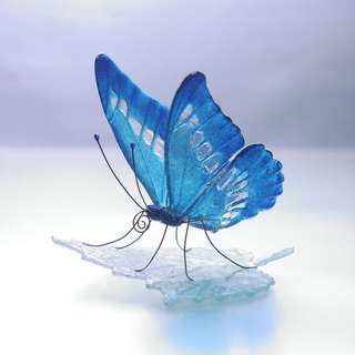 Glass butterfly morpho on leaf