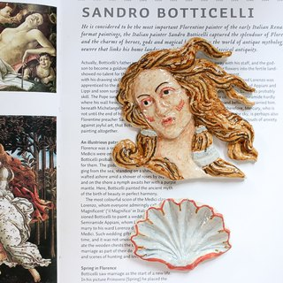 Set 03 Venus with The shell Magnet