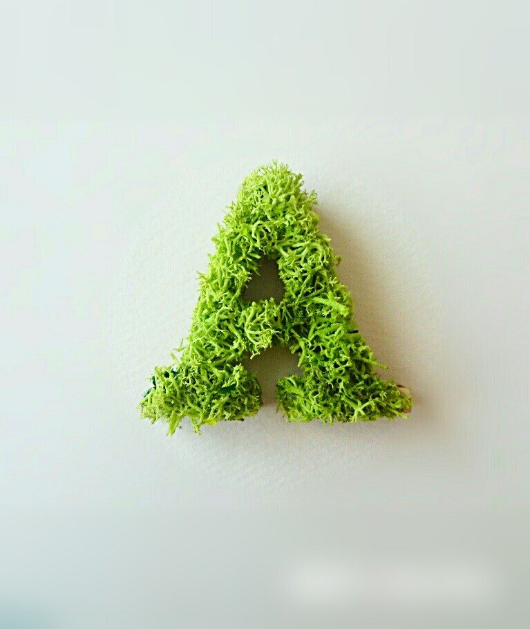 "Wooden alphabet objects (Moss) 5cm ""A"" × 1 point"