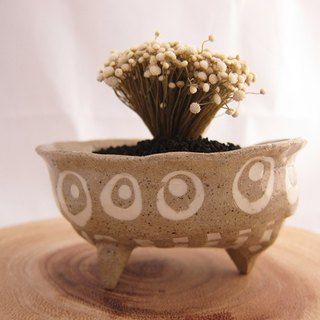 Small ceramic plant pot for cactus , handmade pottery , small pot