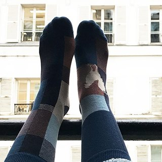 socks_blue_farm/ irregular / socks / stripes / bird