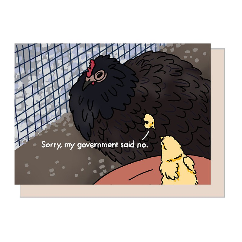 Greeting Card - Sorry my government said no Pandemic chicken Meme