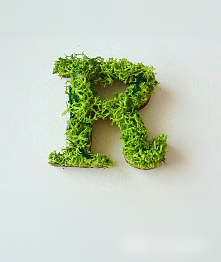 "Wooden alphabet objects (Moss) 5cm ""R"" × 1 point"