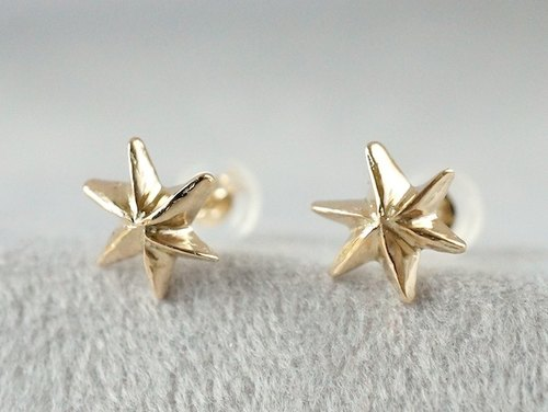 10K Star earrings