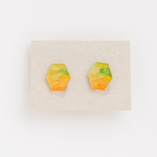 Picture earrings [Hexagon]