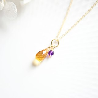 Prosperity Fortunately fortune stone citrine and love guardian stone amethyst twin-chan necklace February / November birthstone