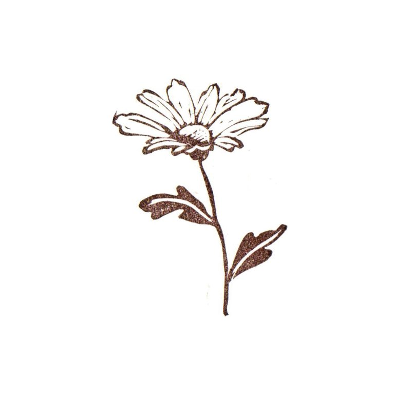 Daisy -Flower - hand carved rubber stamp