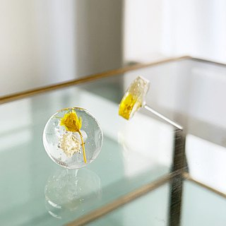 Stud clipping type of earrings contained Yellow Babys breath (12 mm)