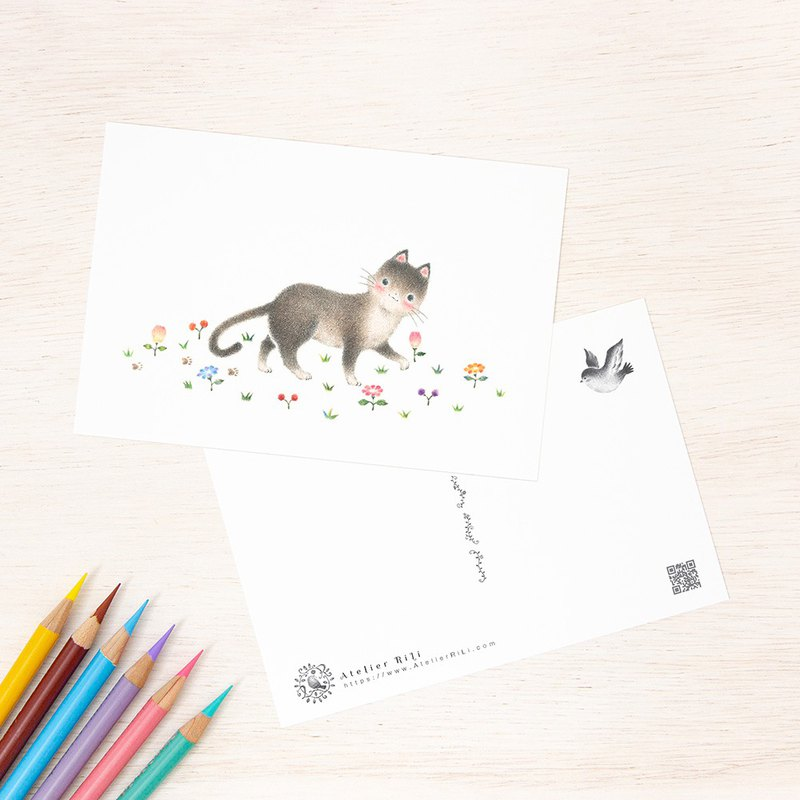 "4 pieces set. Like a picture book. Postcard ""Little child of a cat"" PC - 264"