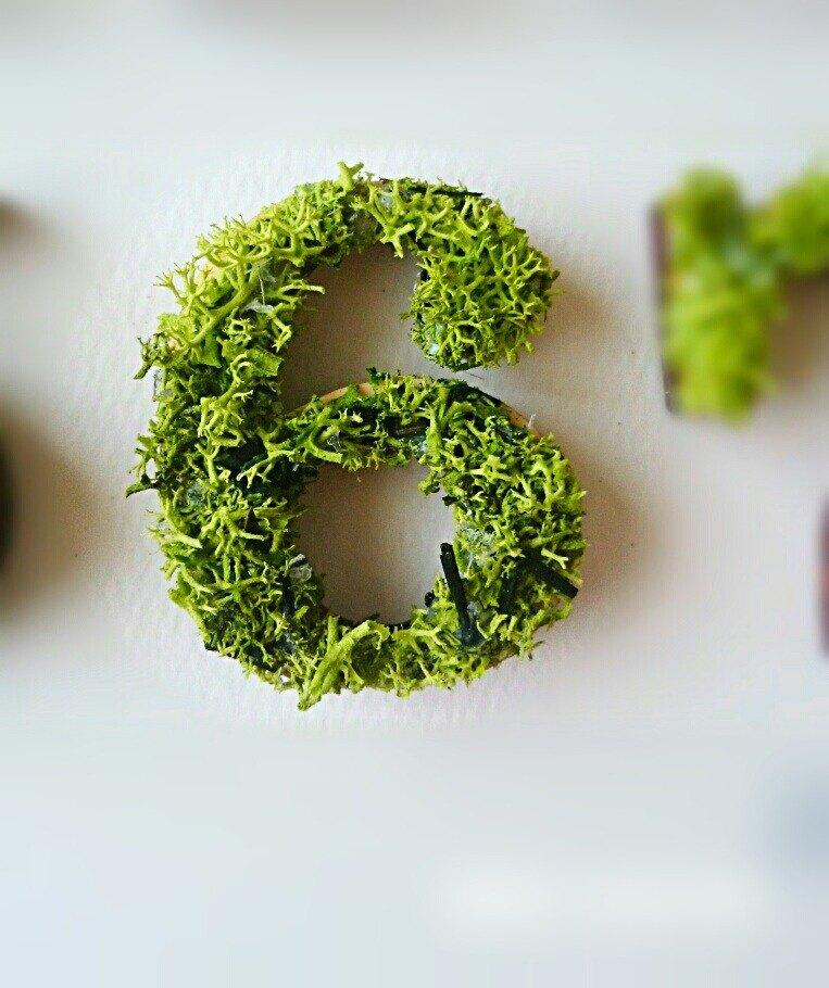 "Wooden numbers objects (Moss) 5cm ""6"" × 1 point"