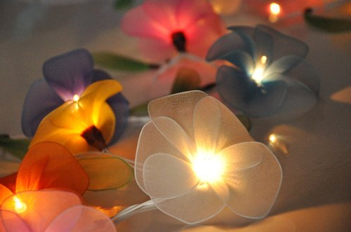 20 Colourful Flower String Lights for Home Decoration Wedding Party Bedroom Patio and Decoration