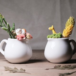 双享肉壶 干燥花多肉盆栽DIY材料包 succulents potted