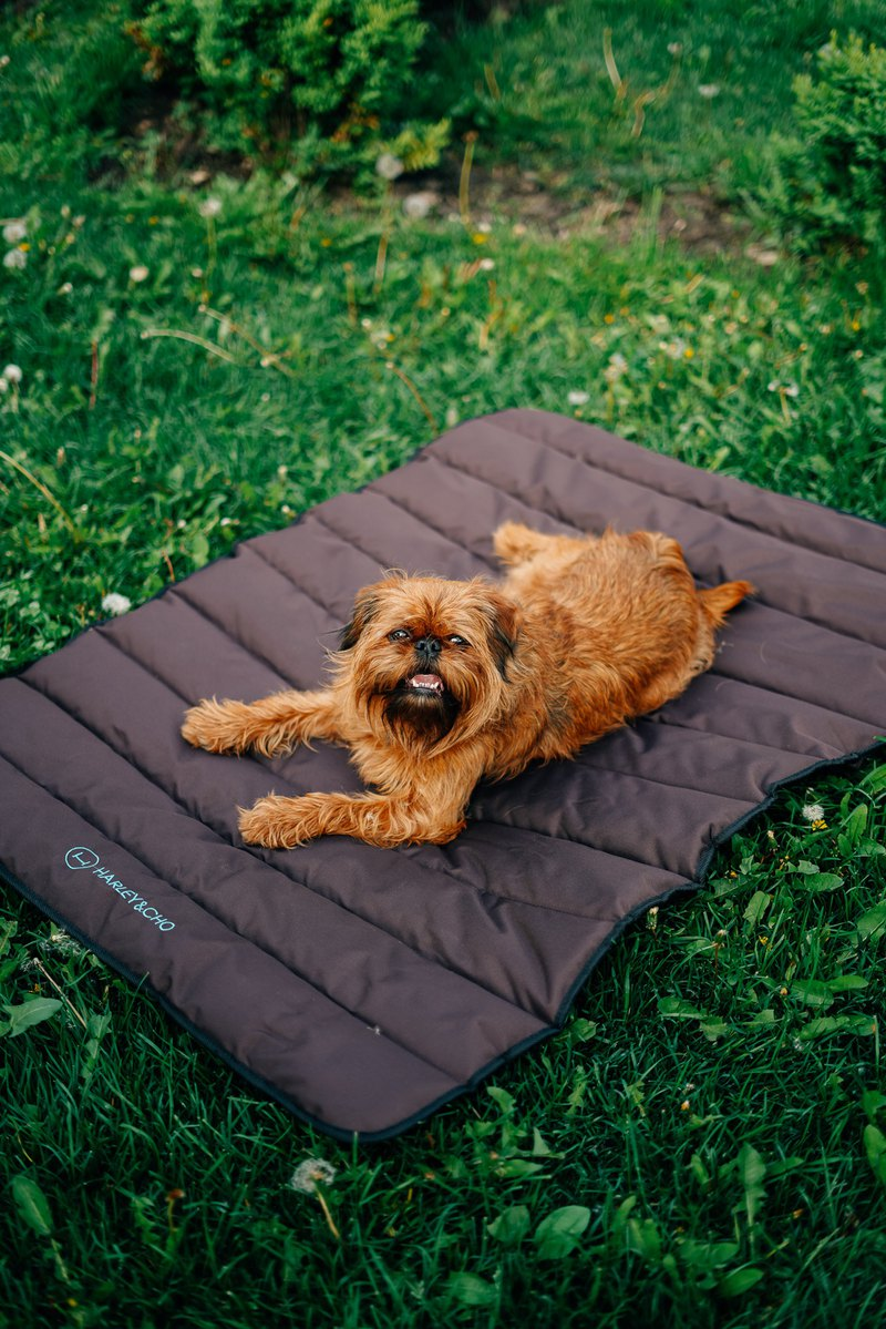 Dog Waterproof Roll up Travel Mat Size M 100x60 cm