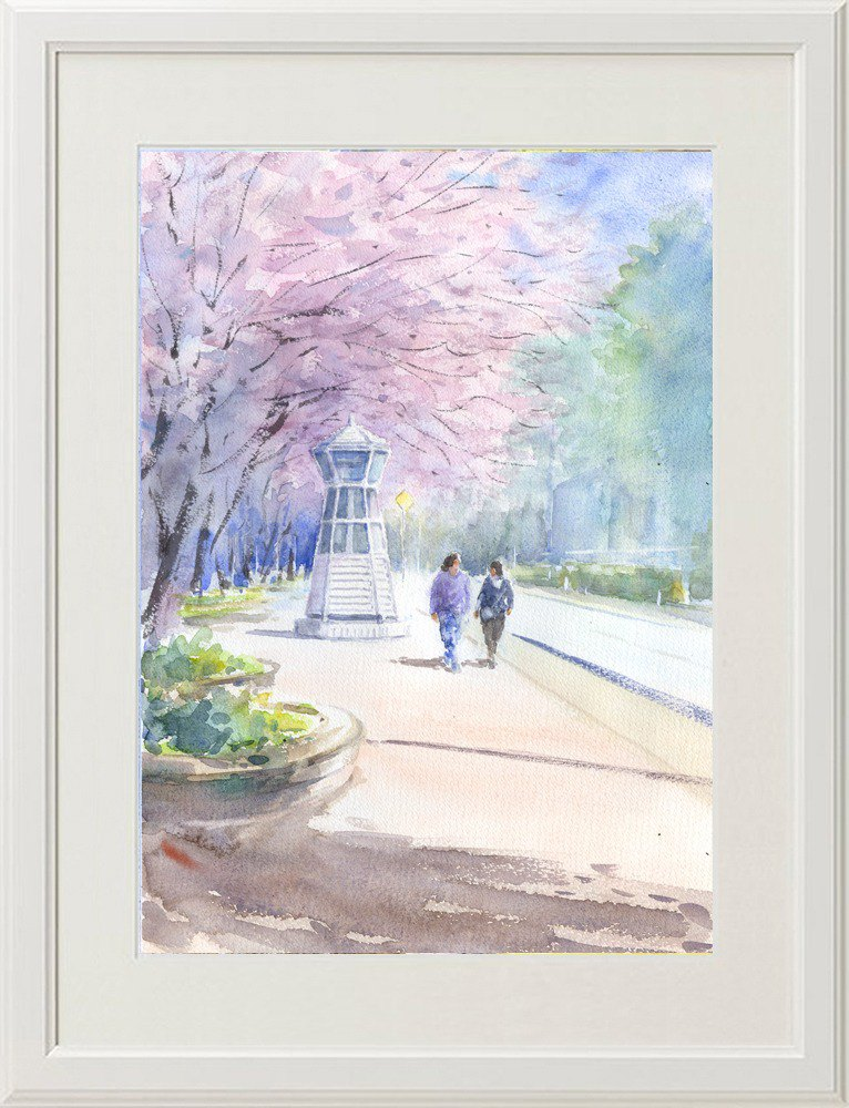 Watercolor picture Sakura road