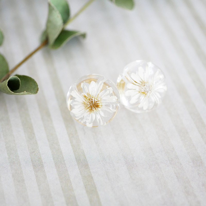 Pressed flower earrings Feverfew