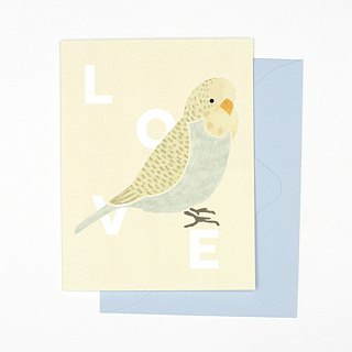 Parrot Love Greeting Card
