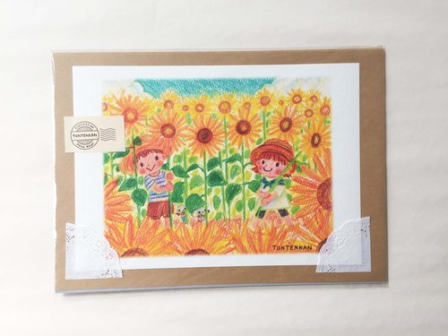 Hide and seek on a sunflower field poster no.048